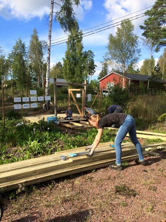 Det finns inget motsvarande på norra Åland. Kul. I den nya aktivitetsparken  för hundar i Godby på Åland kan man träna på allvar ... caede61d66937