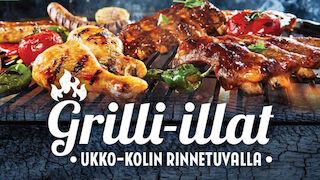 Break Sokos Hotel Koli, Rinnetupa, grilli-illat