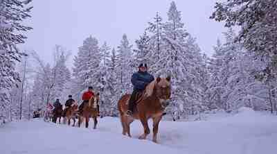 Break Sokos Hotel Levi Levi Finland, talvi, loma, lappi, lapland, talviretki, ratsastus