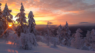 Christmas, Break Sokos Hotel Levi, Lapland, Finland