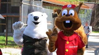 Family ticket to Hop Lop, Rollo-halli and Ranua Zoo from Rovaniemi