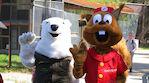 Perhelippu HopLop Rovaniemi, Rollohalli ja Ranua Zoo Rovaniemeltä