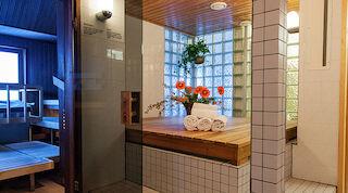 Original Sokos Hotel Vaakuna Hämeenlinna, sauna
