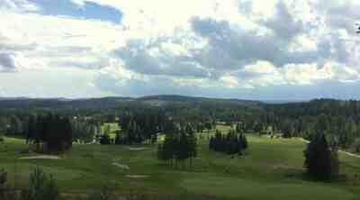 Jyväskylän Sokos Hotellit - golfia