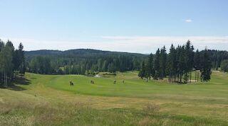 Jyväskylä Sokos Hotels Muurame Golf