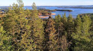 Kütkestavad loodus- ja kultuurielamused Kesk-Soomes