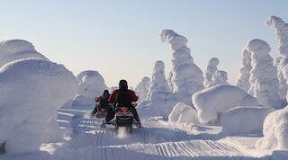 snowmobiling snowmobile winter talvi kuusamo original sokos hotel kuusamo
