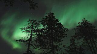 aurora borealis revontulet norhern lights original sokos hotel kuusamo