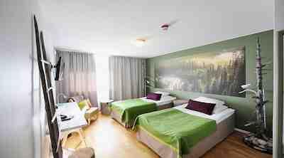 theme room karhu original sokos hotel kuusamo