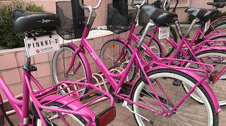 S-Card Benefits for bike rentals