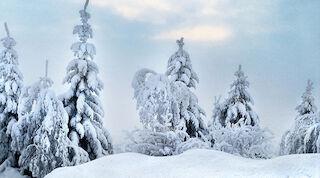 Joulu Vuokatissa talvi hemmottelua Break Sokos Hotel Vuokatti taikaa