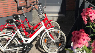 eco-friendly, bicycles for rent