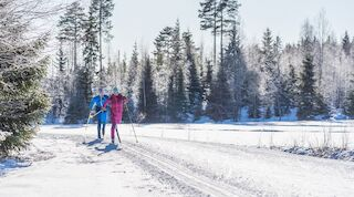 Cross-country skiing is an extremely great way to enjoy the beautiful winter scenery