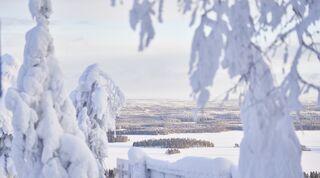 Vinter i Tahko