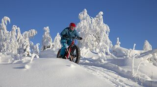 Experience the nature of Tahko by bike all year-round.