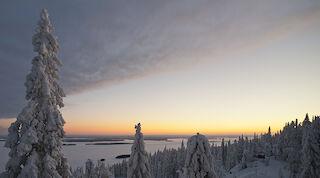 Break Sokos Hotel Koli Pohjois-Karjala North Karelia Finland Suomi