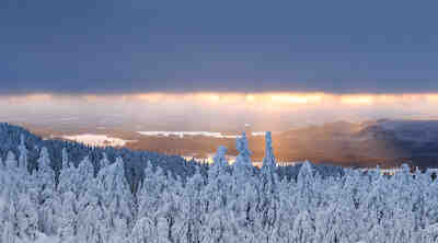 Christmas package in Koli
