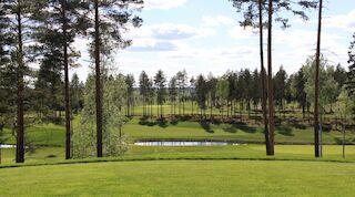 Puulagolf, golfpaketti, Mikkeli, Original Sokos Hotel Vaakuna, kesäloma, Kangasniemi