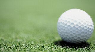 golf, Mikkeli, Original Sokos Hotel Vaakuna, viheriö, green fee