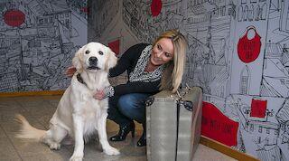 Reisile koos neljajalgse sõbraga, majutus Tallinnas, Viru hotell, koerasõbralik majutus