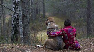 Отметьте Всемирный день животных в Таллинне!