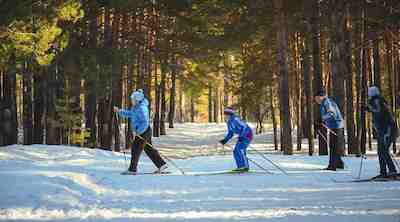 Will you come to watch the Cross-Country World Cup event in Otepää?
