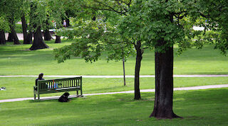 Helsinki puisto luonto