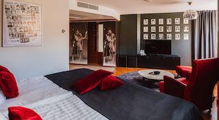 original sokos hotel vantaa armi ja danny polarartistit tulisuudelma