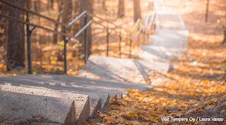 Tampere - Pyynikin portaat