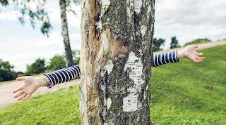 Green Key, vastuullisuus, Onni Orava, ympäristöystävällinen