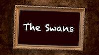 Lamppu The Swans