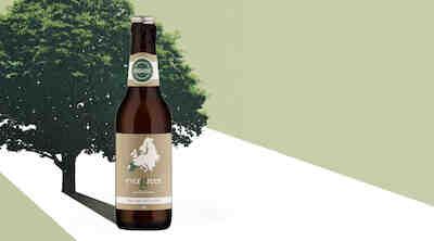 evergreen organic cider