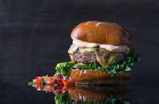 Sulon burgeri