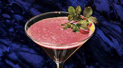 Marina Lounge Cocktail Tarja Airola