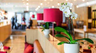 Grill it! Marina, Radisson Blu Marina Palace Hotel Turku